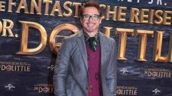 "Robert Downey Jr. e promovoi filmin ""Dolittle"" në Berlin"